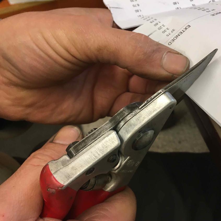 32. RHS test. Can blade cut paper?
