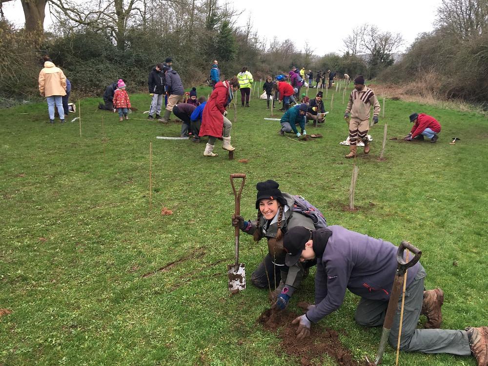 Community planting trees