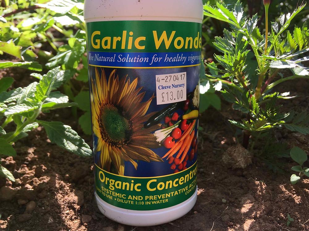 Garlic Wonder