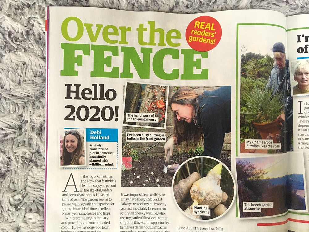 Over the Fence, Garden New magazineJanuary 2020