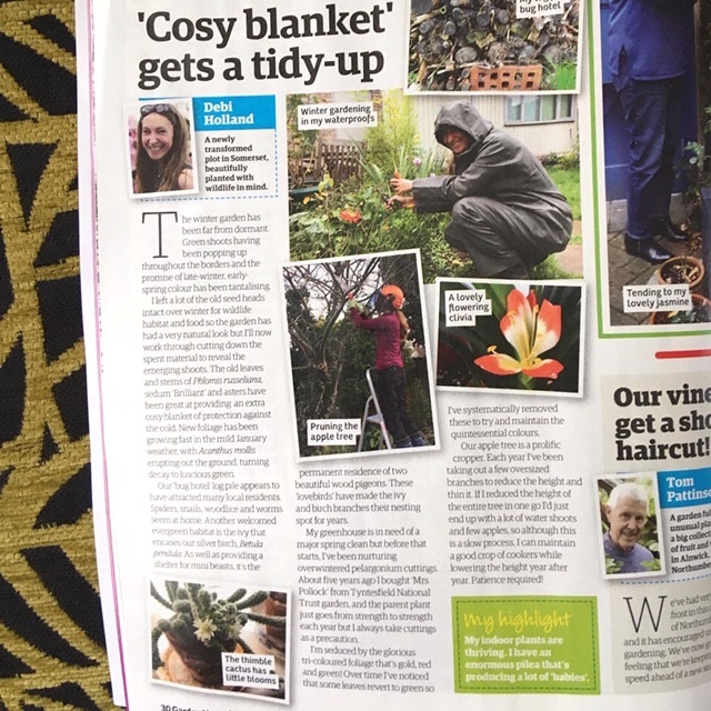 February Garden News magazine 2020