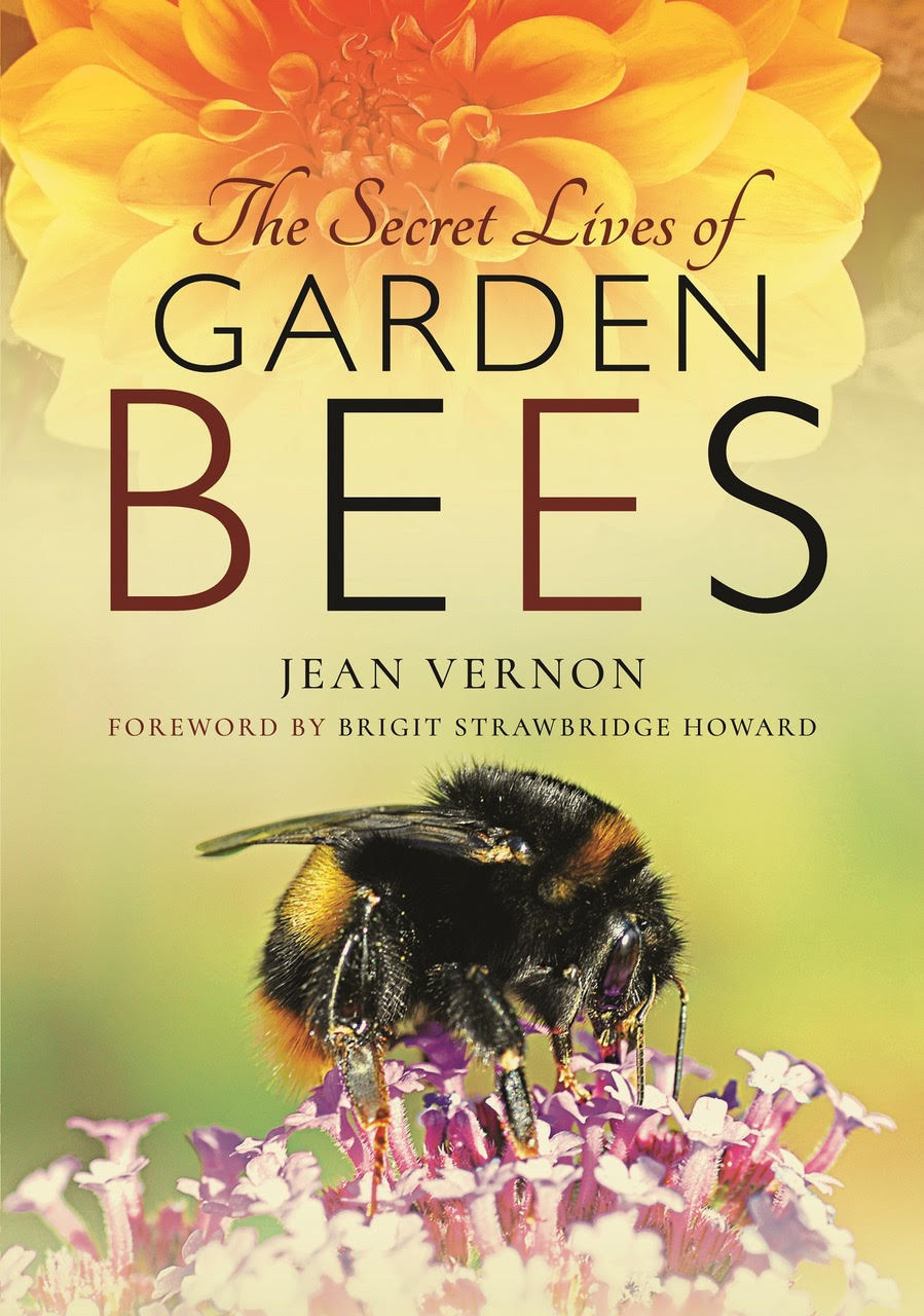 The Secret Lives of Garden Bees by Jean Vernon