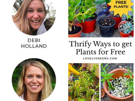 Thrifty Ways to Get Plants for Free