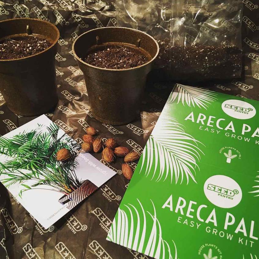 Seed Pantry Palm kit