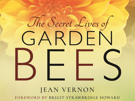 The Secret Lives of Garden Bees Review