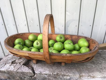 Garden News Mag Harvest Time