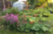 My garden April 2020.jpeg