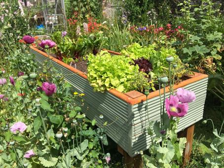 Richard Jackson Garden How To Make Gardening A Bit Easier