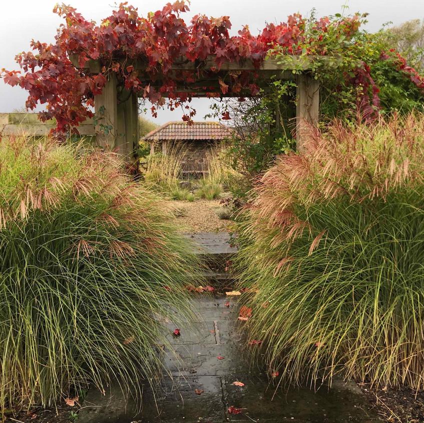 South Courtyard autumn view