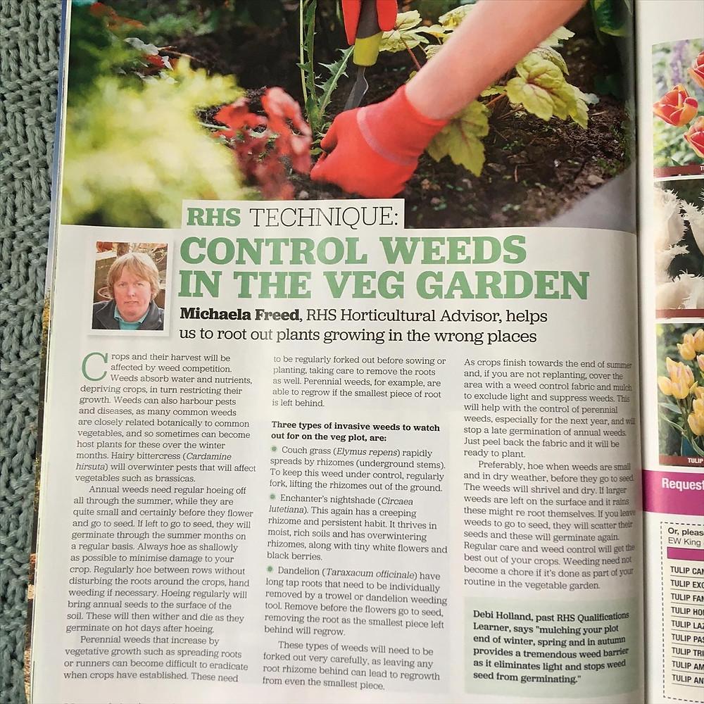 Control weeds in the veg garden