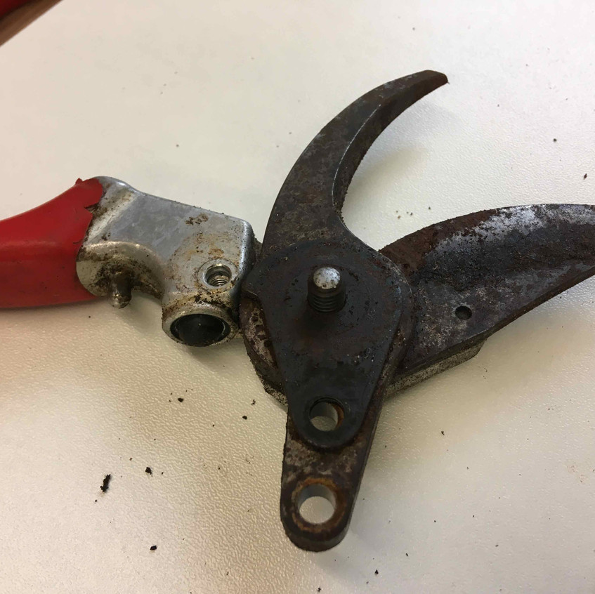 5. Rusty blades