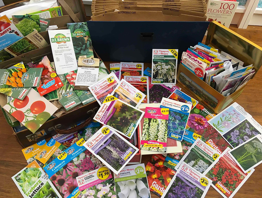 Sort through your seed collection