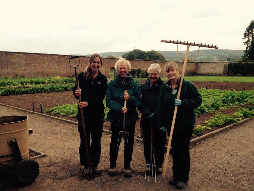 Volunteering at Tyntesfield National Trust Walled Kitchen Garden