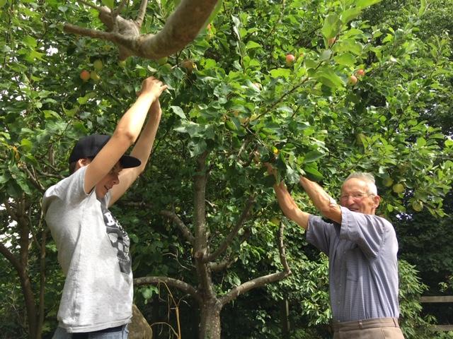 My son & Ian picking apples