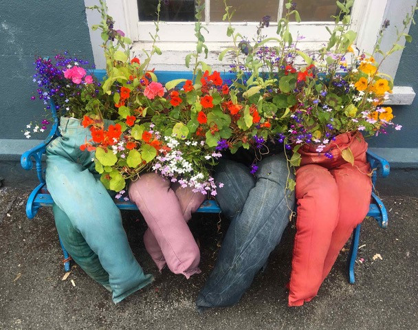 Trouser planters at llandovery