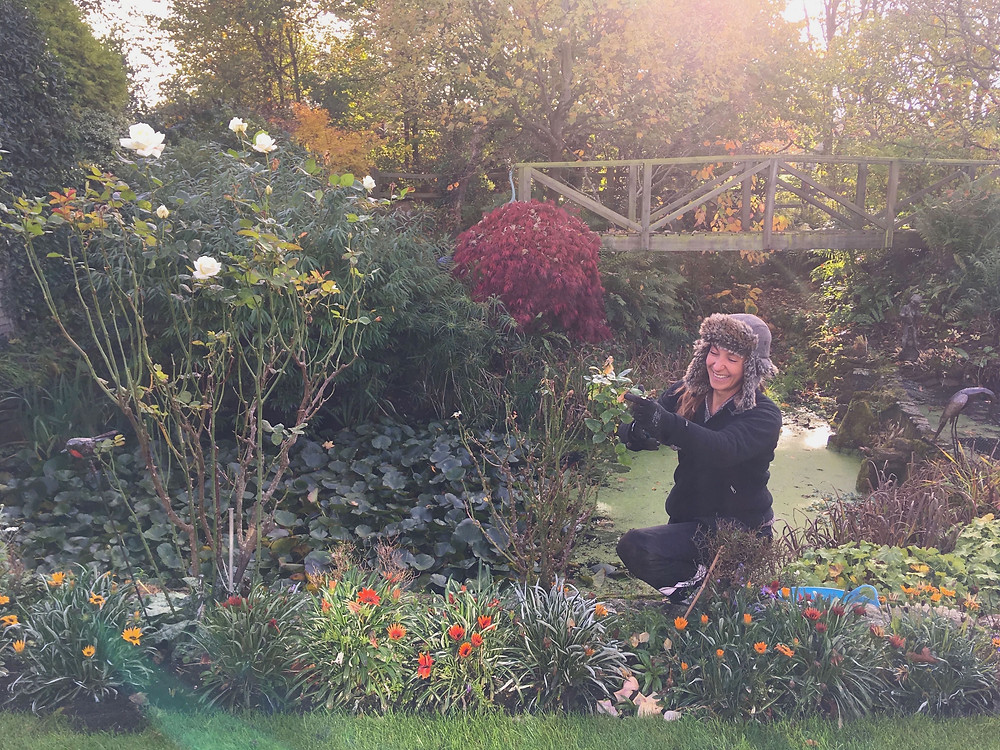 Me pruning roses by the pond