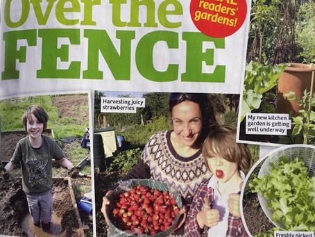Garden News Magazine Allotment to Kitchen Garden