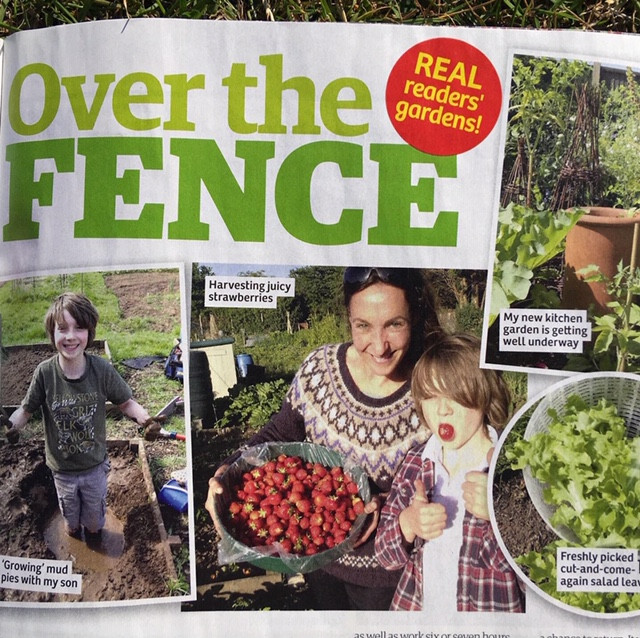 Our allotment and kitchen garden featuring in Garden news Magazine August 2019