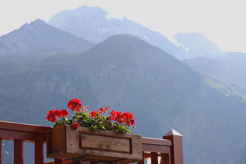 Wooden boxes of Pelargoniums don the mountain terraces