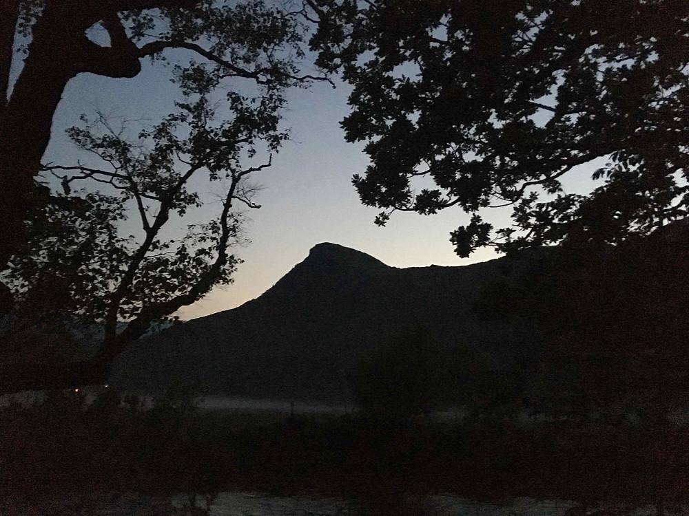 Evening mist rolls over marsh