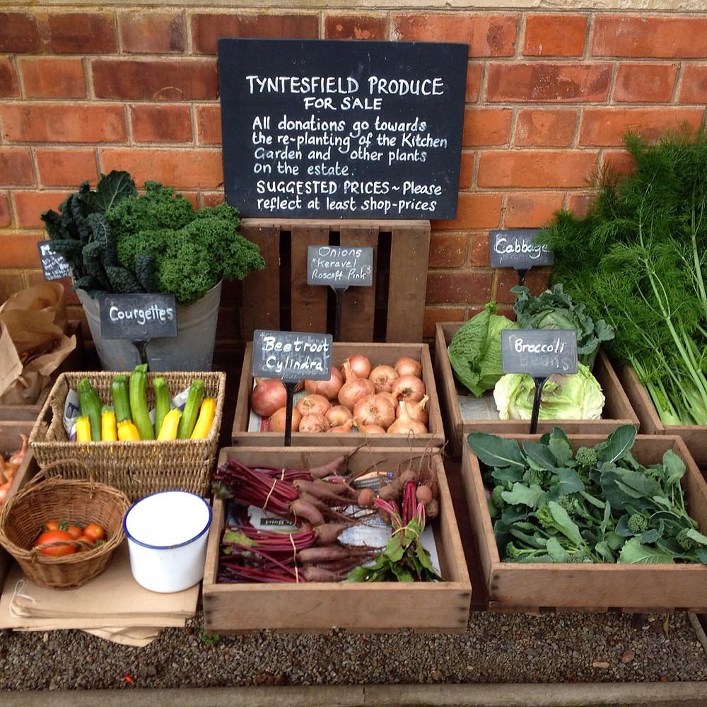 The Tyntesfield Produce table. Photo: Debi Holland