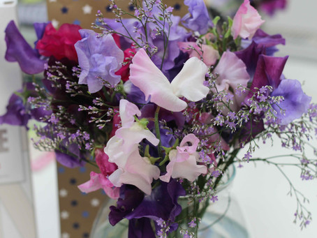 How do I get the most from my sweet peas?