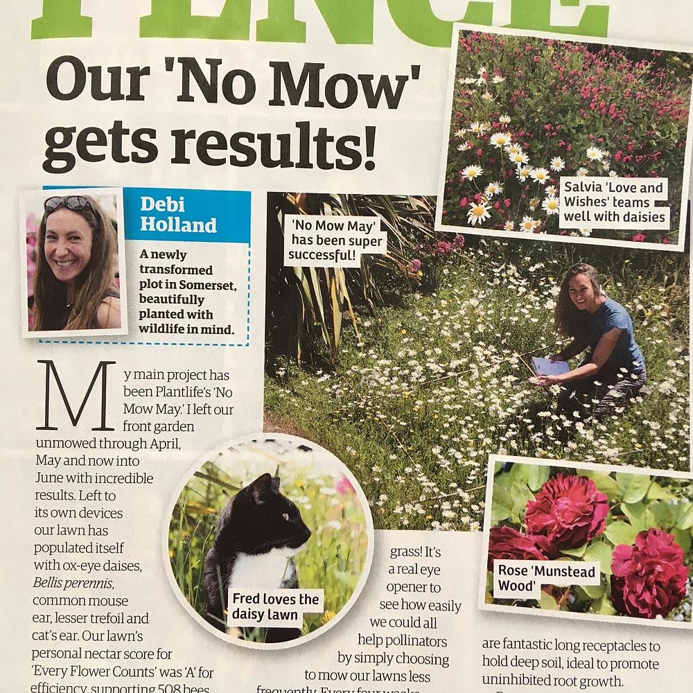 No Mow May gets results!