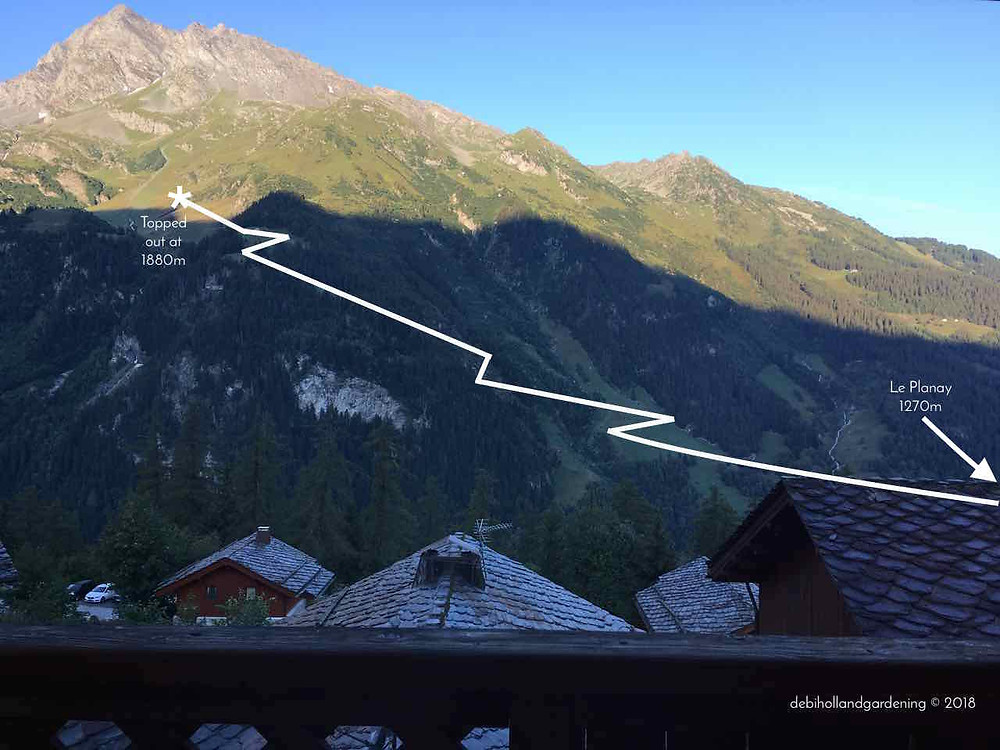 The route view from Sainte Foy