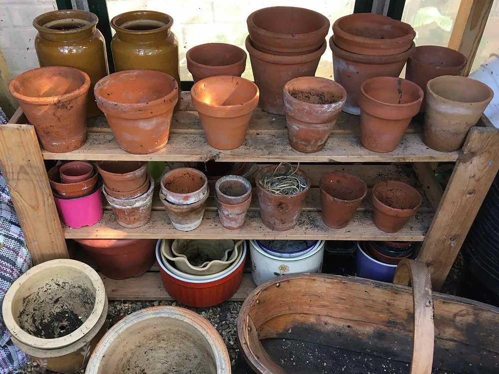 Tidy up pots & the greenhouse