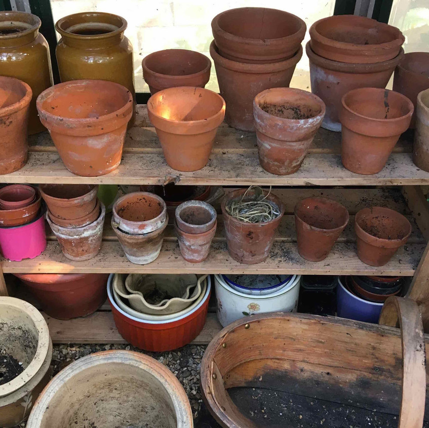 Tidy up pots & greenhouse