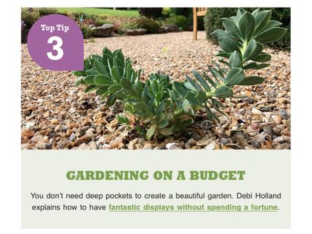 Richard Jackson Garden Gardening on a Budget
