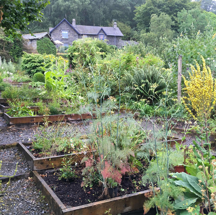 Native herb beds
