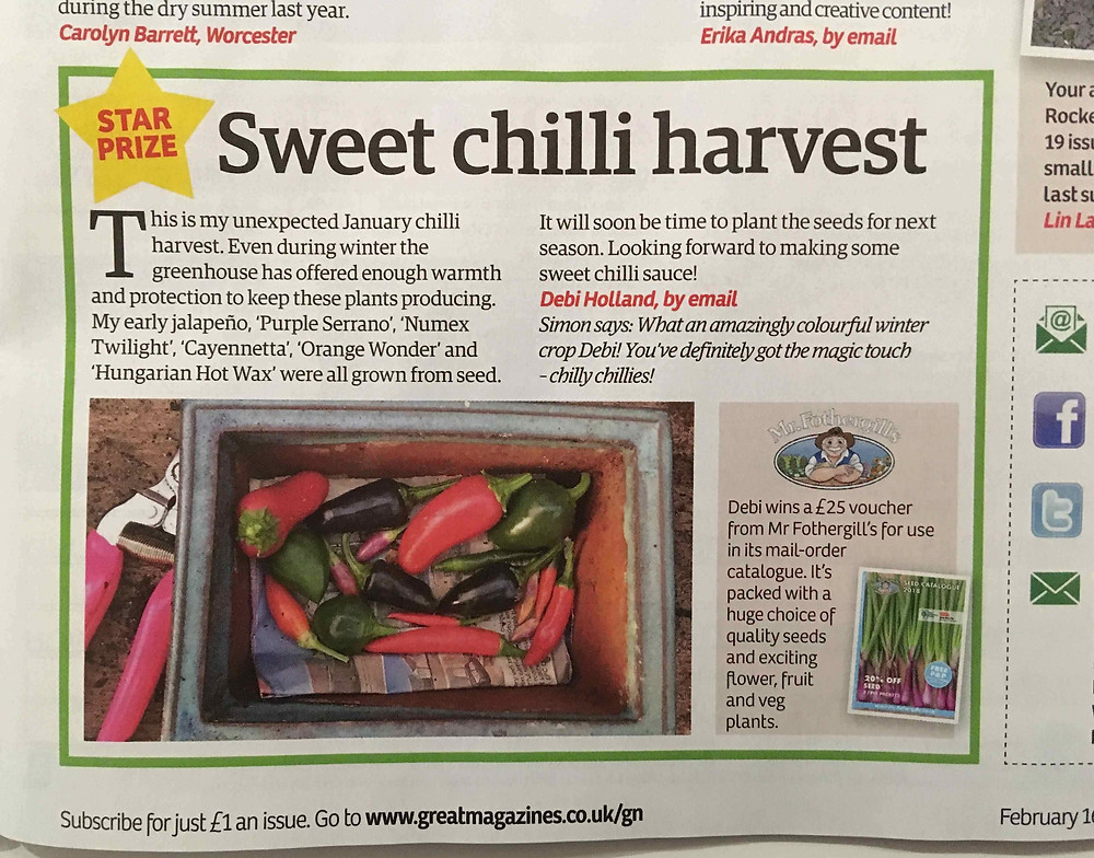 Star Prize in 16 February edition of Garden News magazine