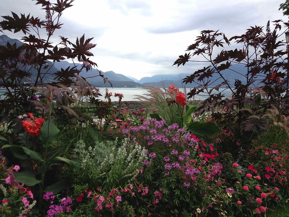 Biodiversity border by Lake Annecy