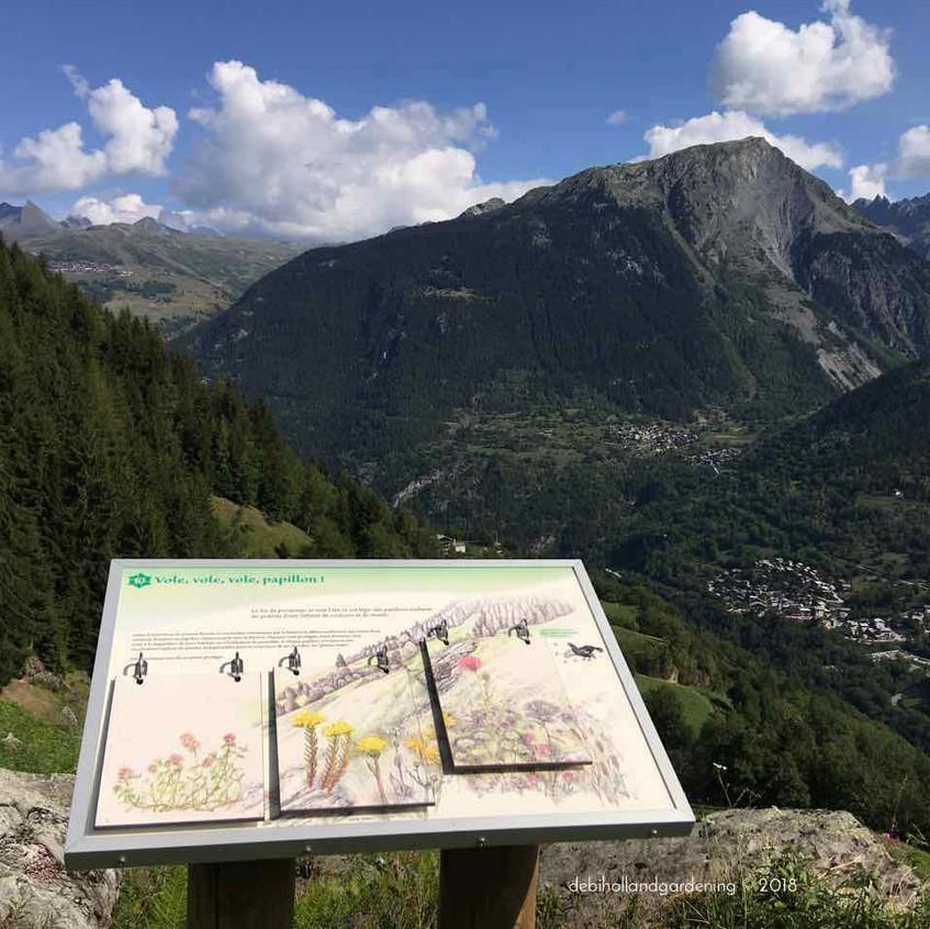 Wildflowers & wildlife information board