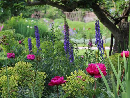 Five Fab Sussex Gardens