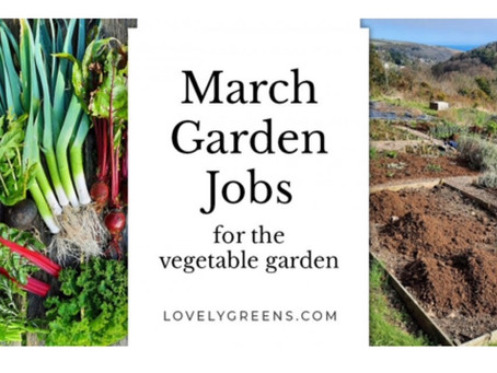 March Garden Jobs for the Vegetable Garden