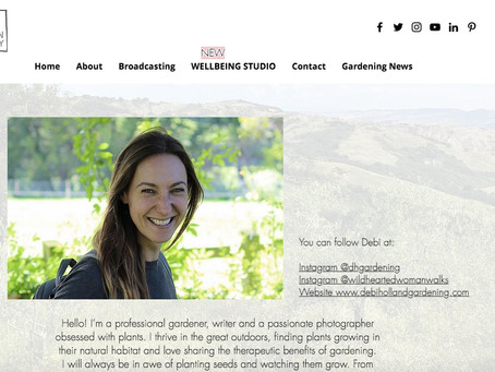 Ellen Mary Wellbeing Studio