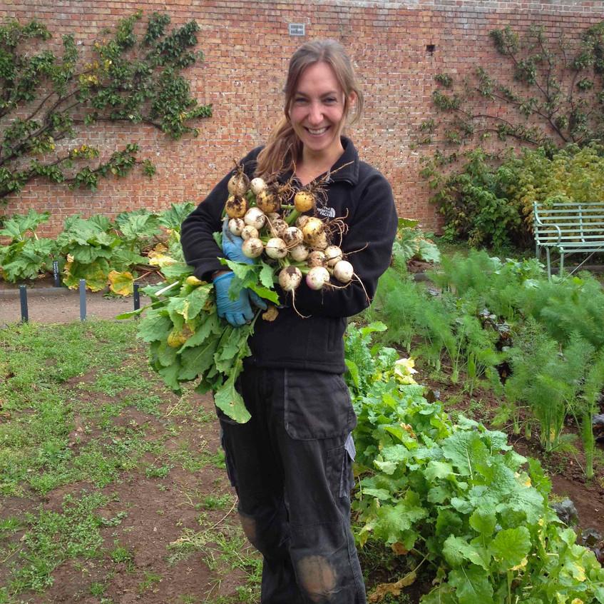 Debi harvesting turnips. Photo: Jane