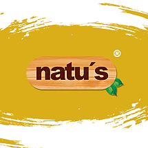 Natu's Lanches.png