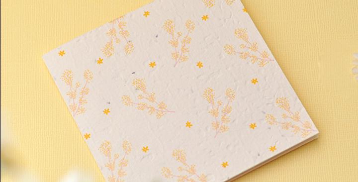Daisee Plantable Greeting Card