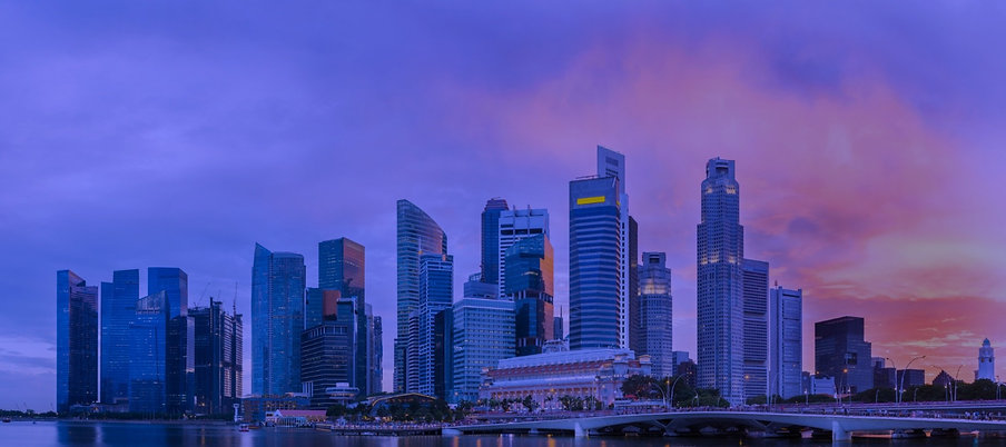 Singapore_edited_edited_edited.jpg
