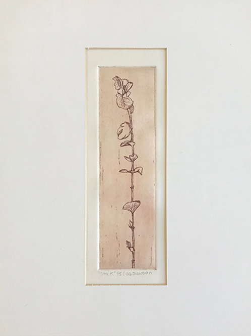 Stalk--Matted 11x14