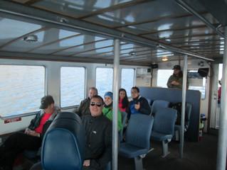 Grey Whales Returning to Alaska!