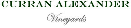 Curran Alexander Logo.jpg