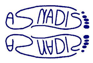asnadis3-2.jpg