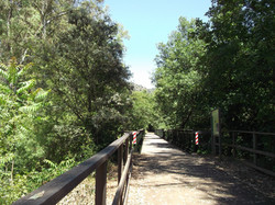 Espacios Naturales y Vias Verdes en Andalucía 077