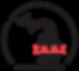 IAAI-Michigan-2C_lisa.png
