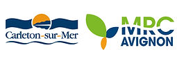 logo_Ville_Carleton_MRC.jpg