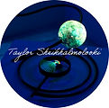 Taylor Sheikhalmolooki.jpg